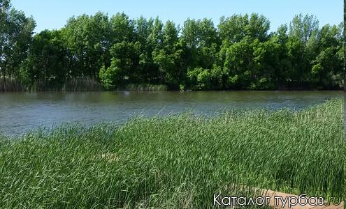 Река Кочеты
