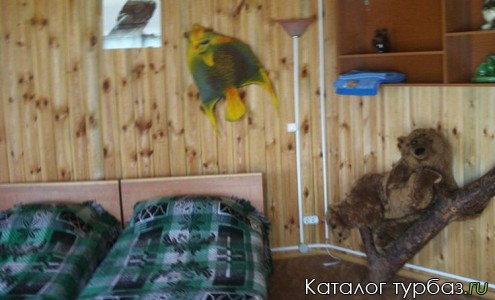 База отдыха «Хуторок сова»