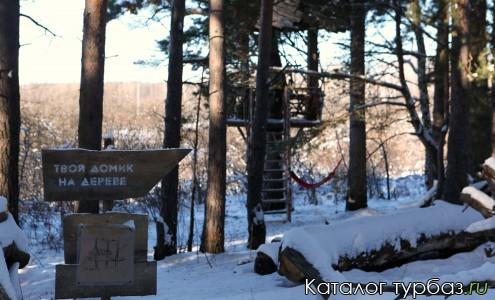 Наши домики на деревьях
