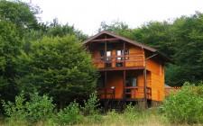 Гостевой дом Дрозды
