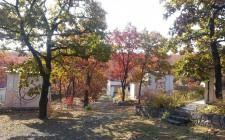 вид осенью